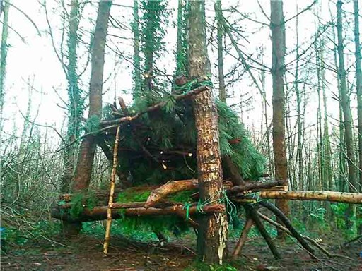 Хижины в лесу своими руками