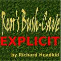 http://media.textadventures.co.uk/games/1RurGHLuLUqrWdMJh53LTQ/bushcave-explicit-r9/Small%20Cover.jpg